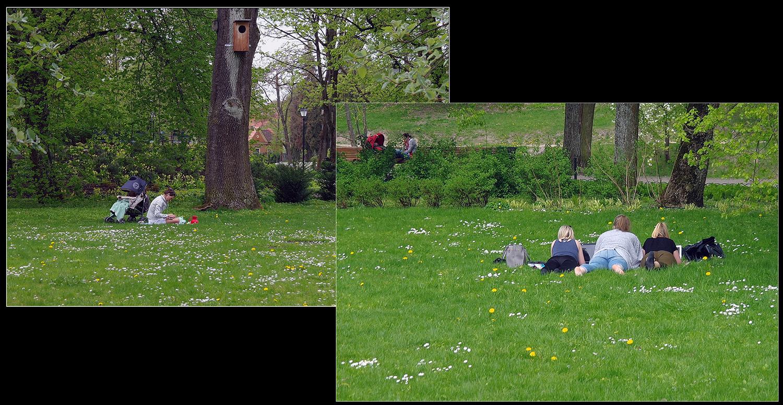 "photo ""Rest on the grass ..."" tags: travel, street, Вильнюс парк"