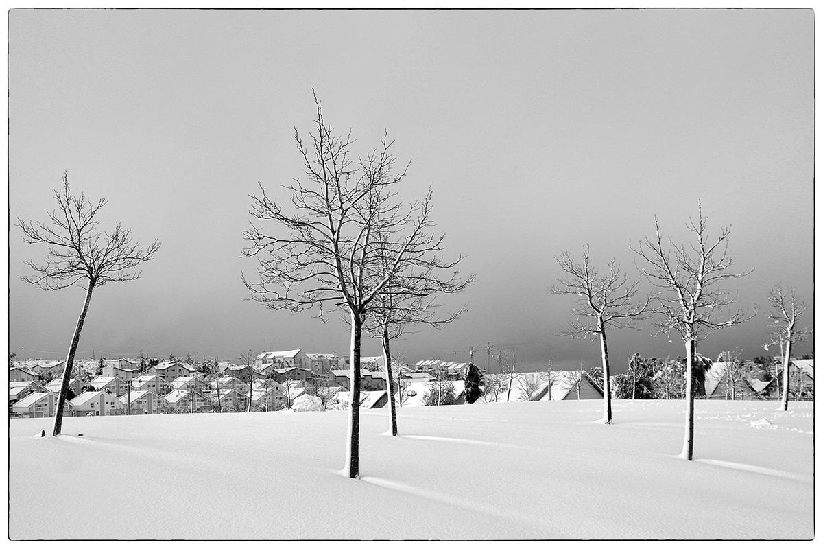 """фото """"Ночью выпал снег..."""" метки: путешествия, черно-белые, город,"""