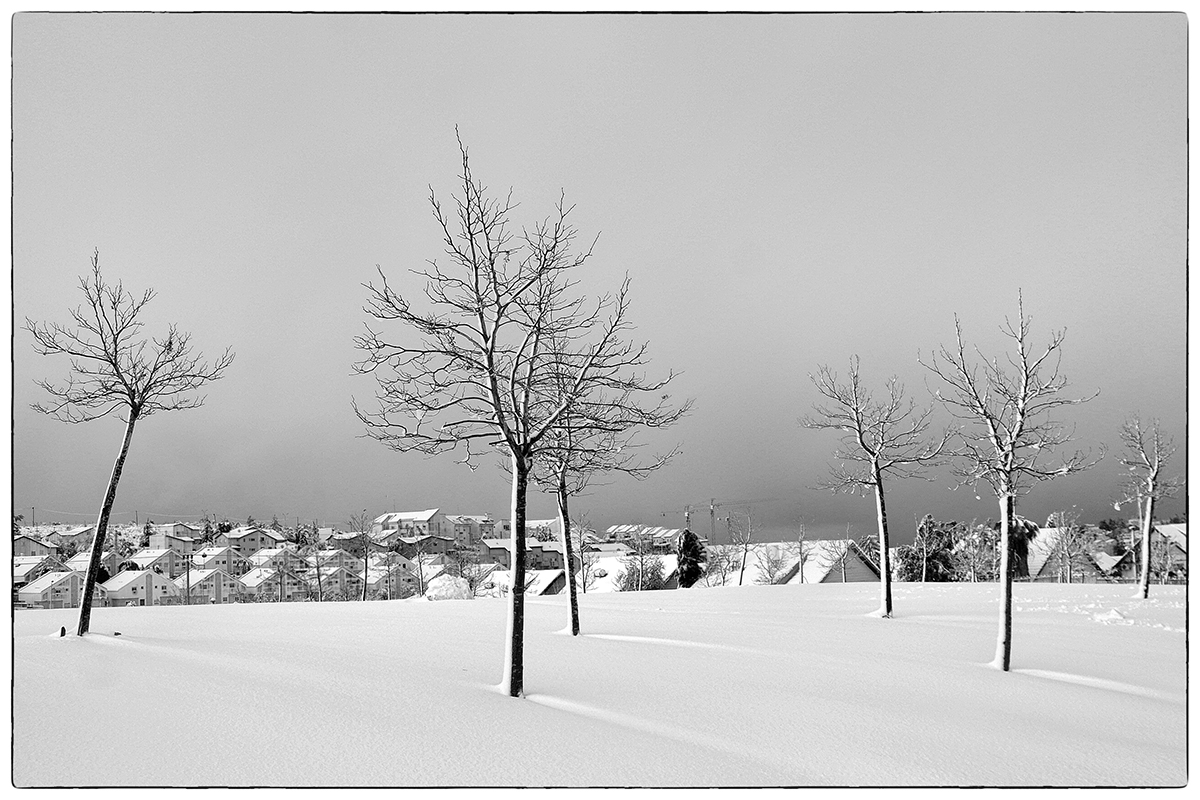 "photo ""Snow fell at night ..."" tags: travel, black&white, city,"
