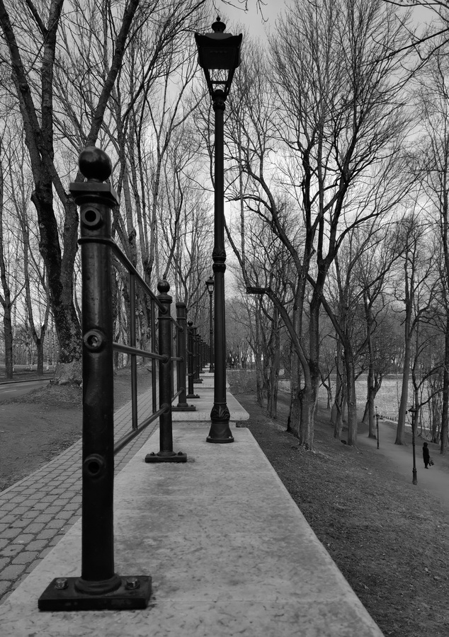 "photo ""Lines of the Dark Park. Narva"" tags: travel,"