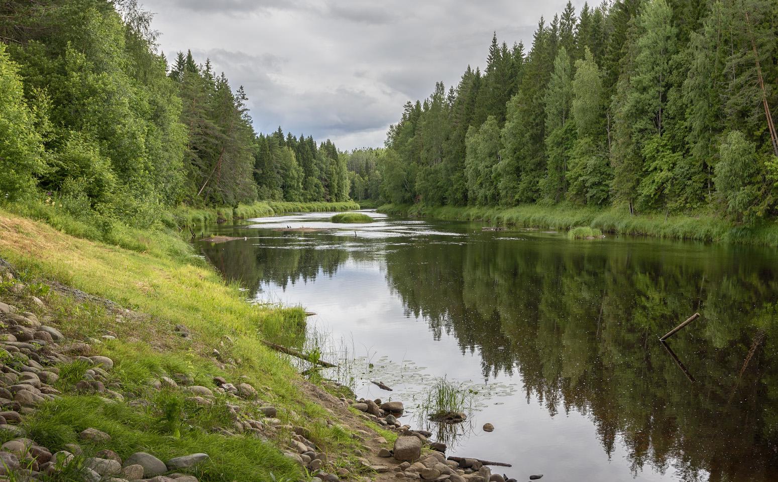 фото реки черной карелия плечи зачастую ложатся