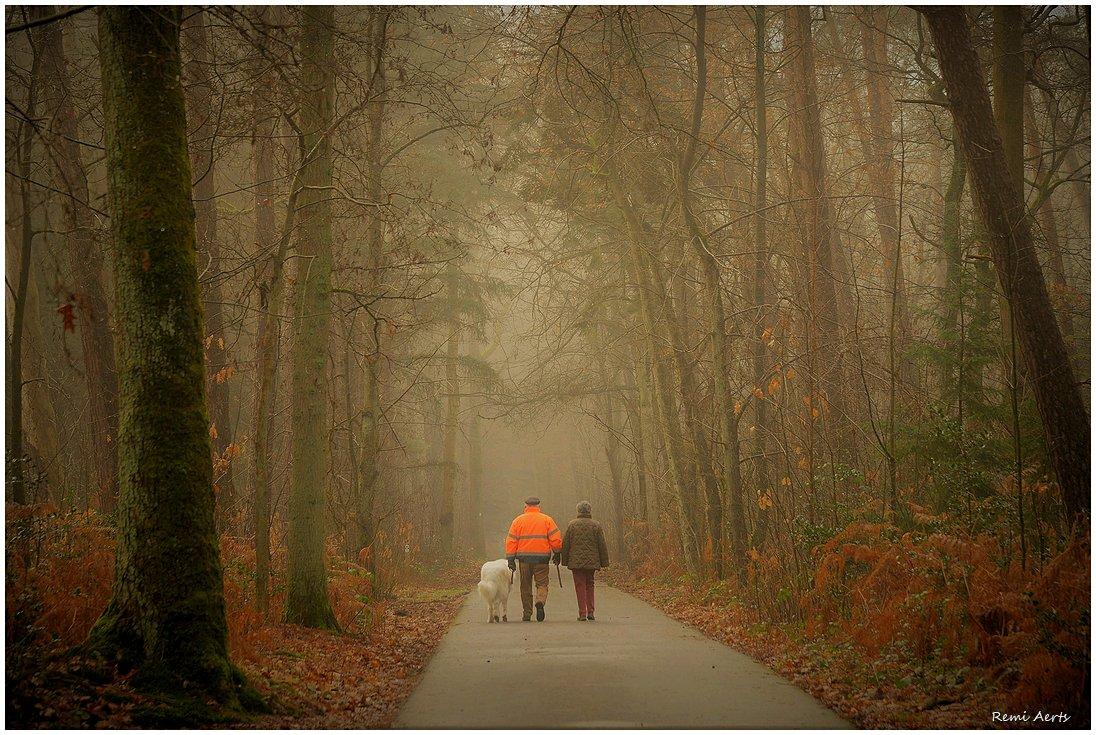 "photo ""***"" tags: landscape, nature, street,"