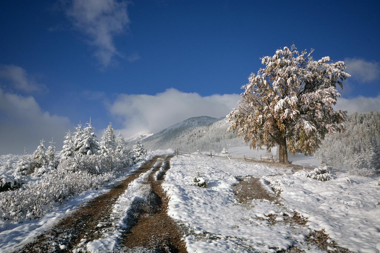"""фото """"Карпаты. Дорога на полонину."""" метки: пейзаж, Карпаты, осень, снег"""