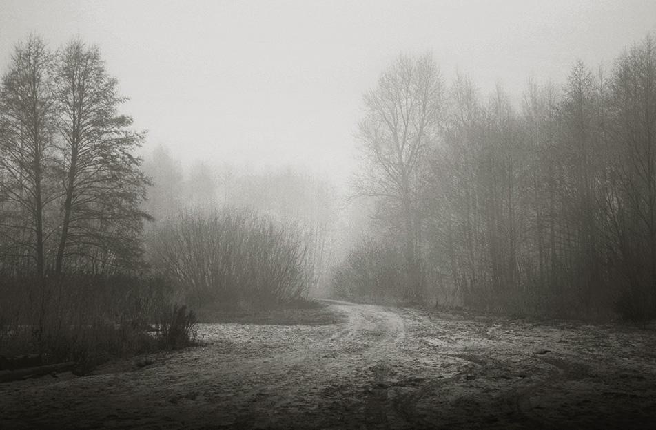 "photo ""***"" tags: landscape, fog"