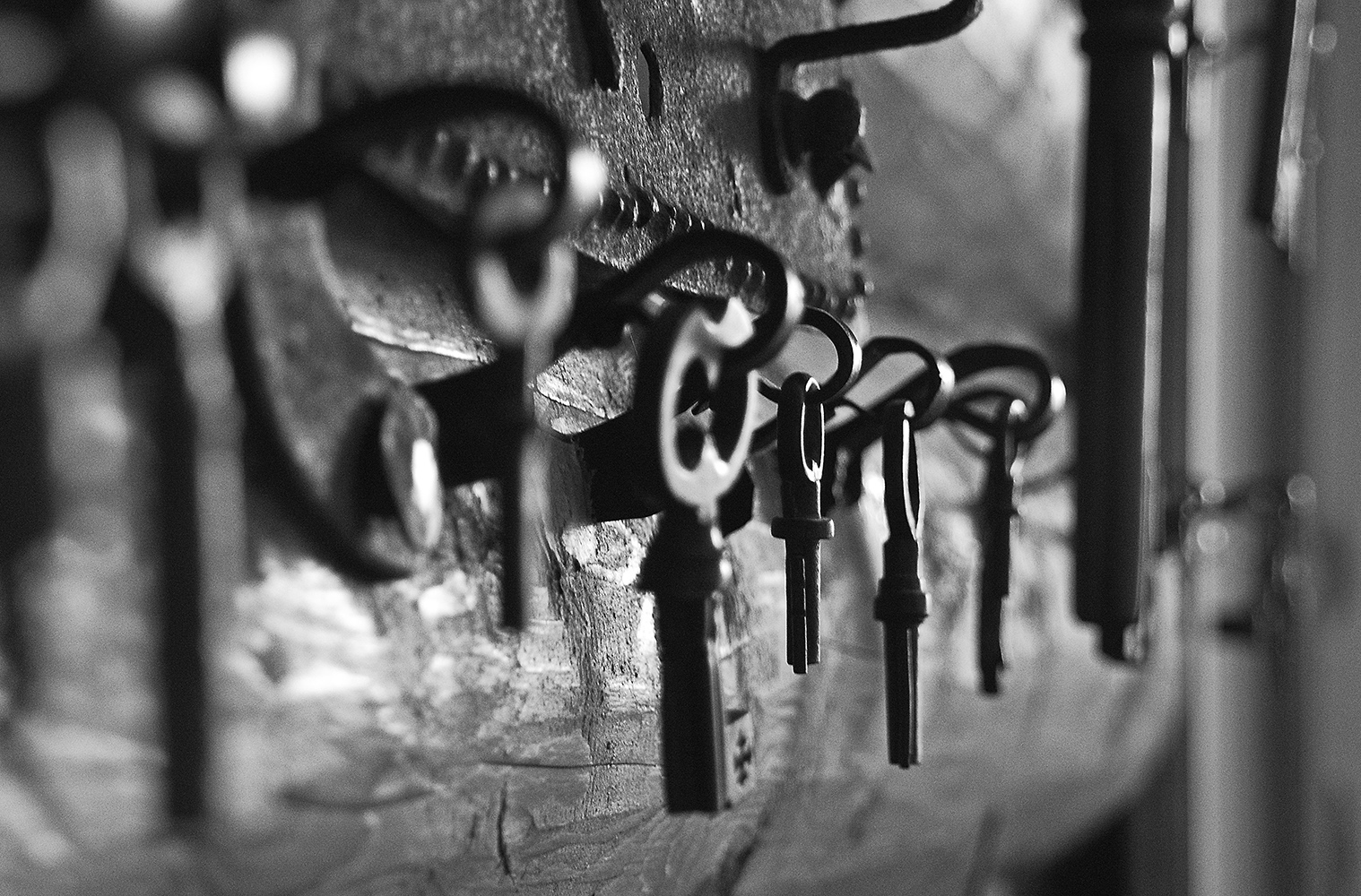 "photo ""***"" tags: black&white, old-time, macro and close-up, Суздаль, Щурово городище"