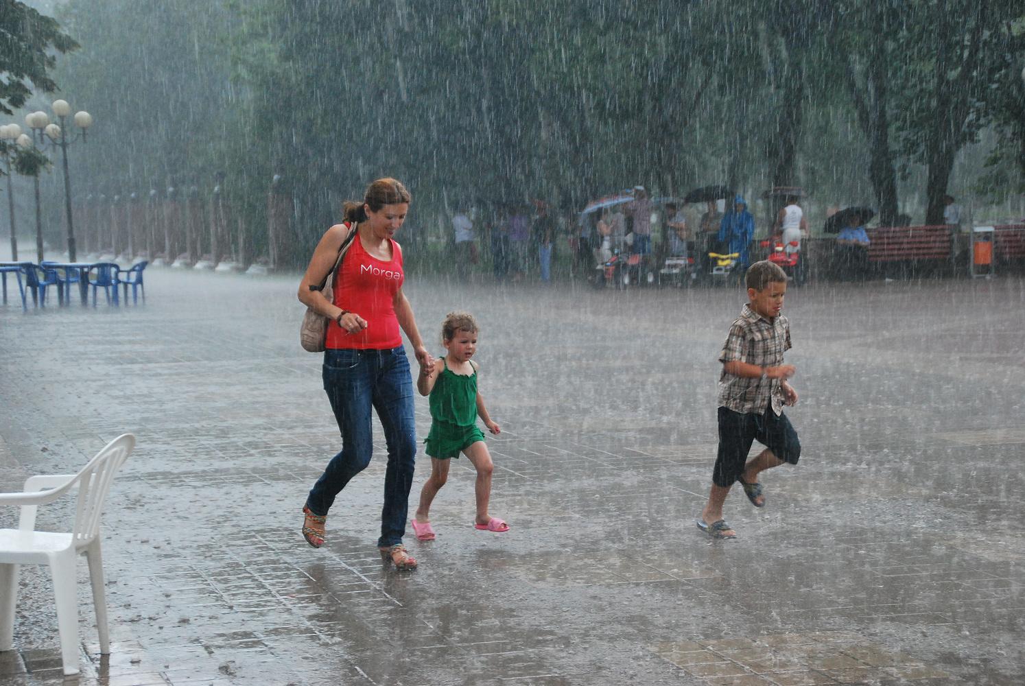 """фото """"Под летним дождём."""" метки: ,"""