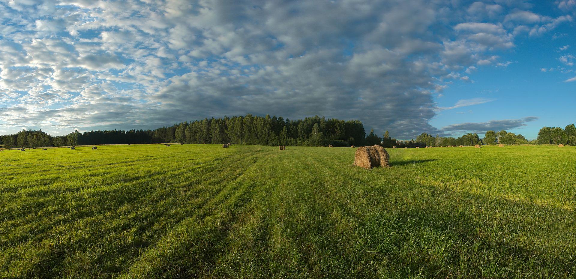 """photo """"***"""" tags: landscape, nature,"""