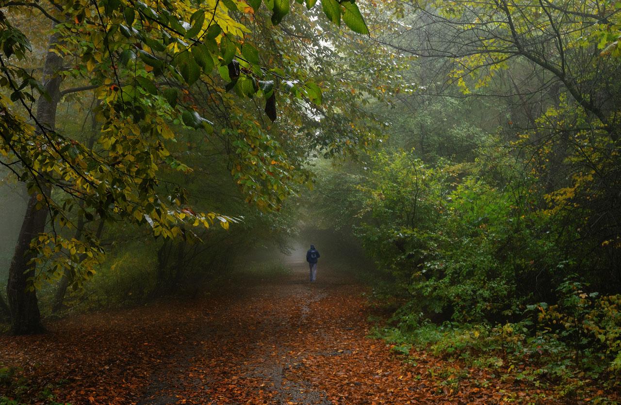 "photo ""***"" tags: landscape, autumn, Кабардино-Балкария, пригород г. Нальчика"