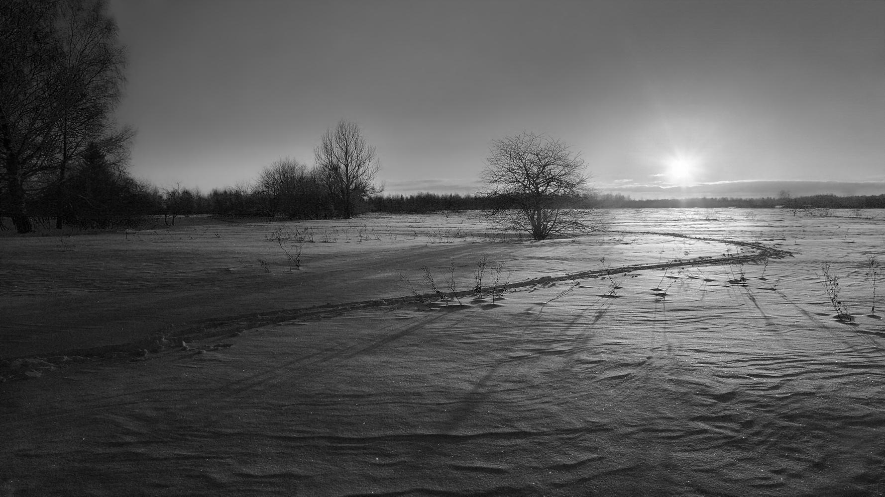 "photo ""***"" tags: landscape, nature, evening, light, snow, sun, монохрои"