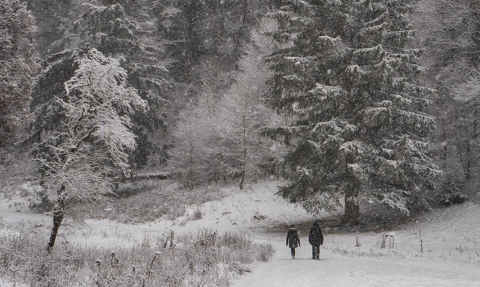 """photo """"***"""" tags: landscape, nature, misc.,"""