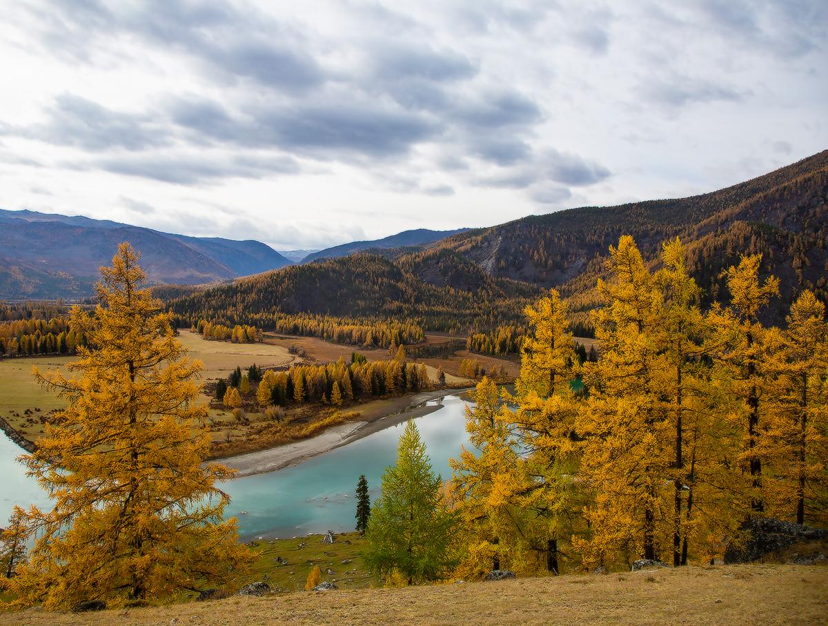"""фото """"Алтайская осень"""" метки: пейзаж, путешествия, природа,"""