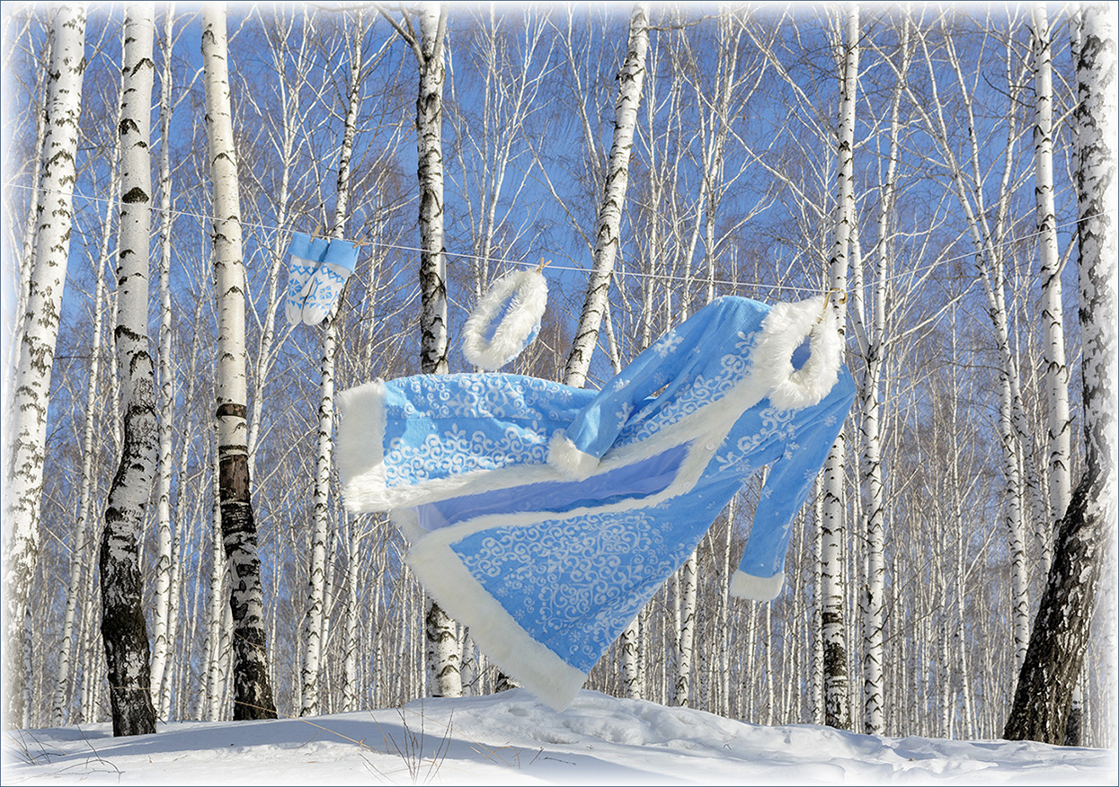 "photo ""***"" tags: reporting, бельевая веревка, берёзовая роща, варежки Снегурочки, ветер, костюм Снегурочки, шапочка Снегурочки"
