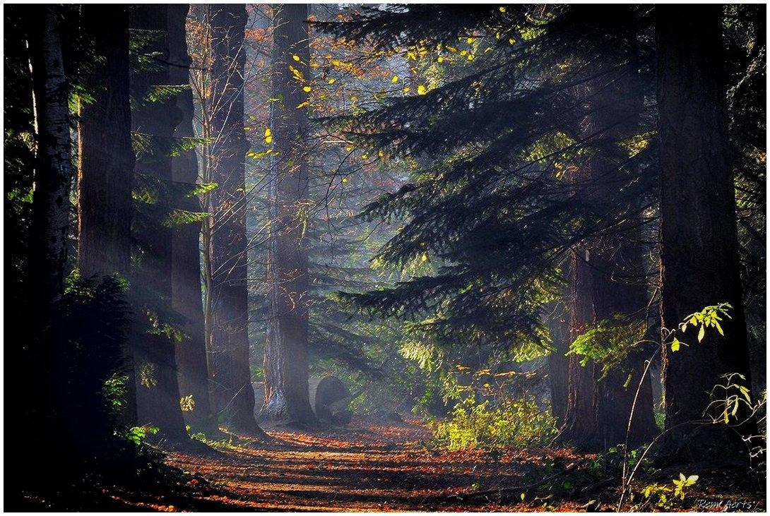 "photo ""My 883 award photo on pf"" tags: landscape, nature,"