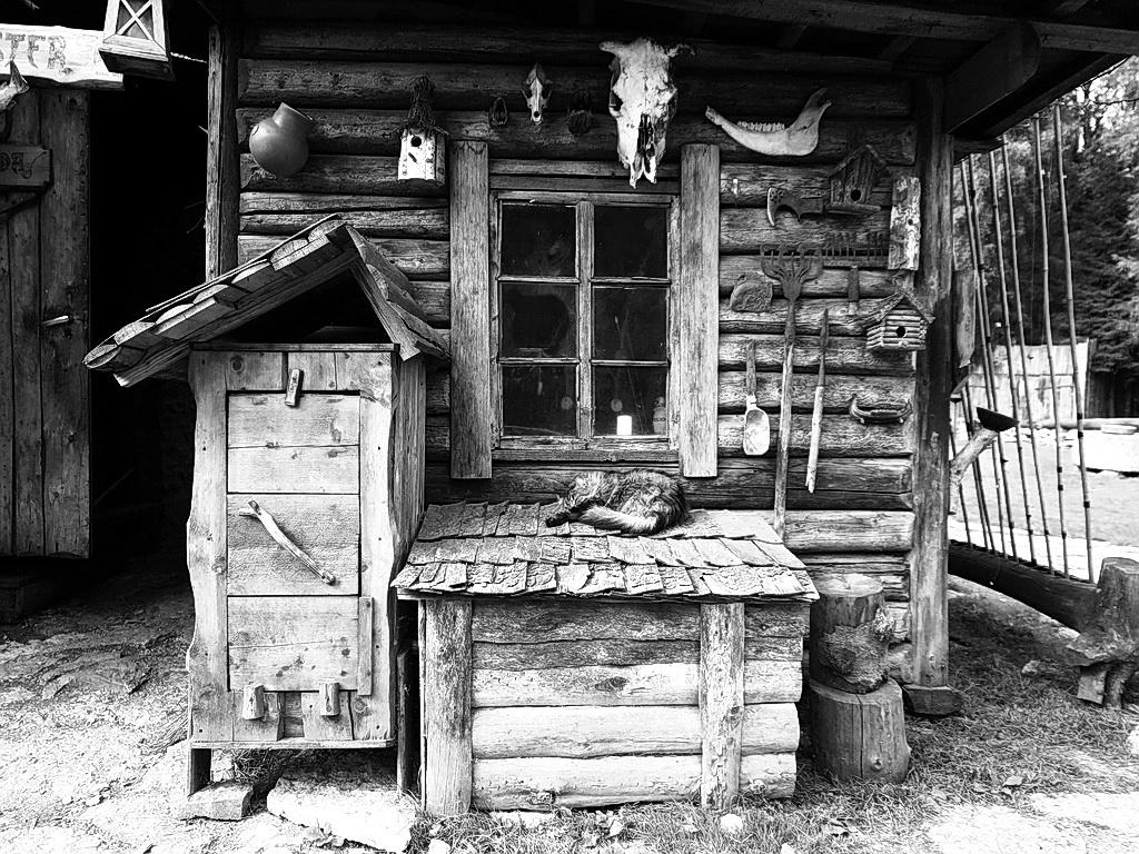 """фото """"Старая избушка"""" метки: черно-белые, разное,"""
