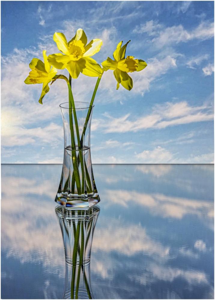 "фото ""Нарциссы"" метки: натюрморт,"