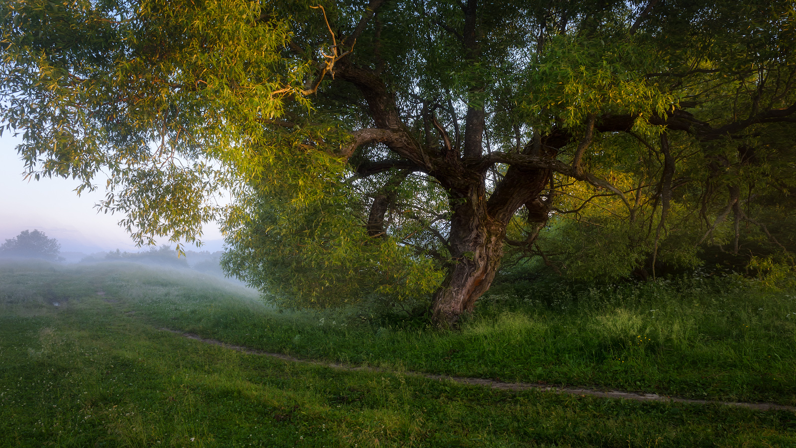 "фото ""стёжки-дорожки"" метки: пейзаж, природа,"