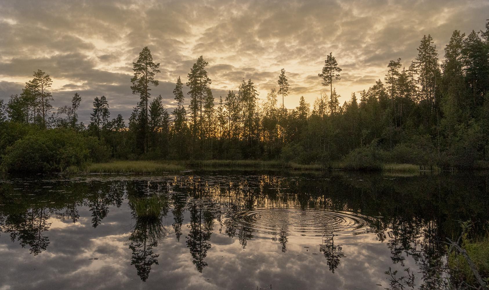 """photo """"Вечернее"""" tags: landscape,"""