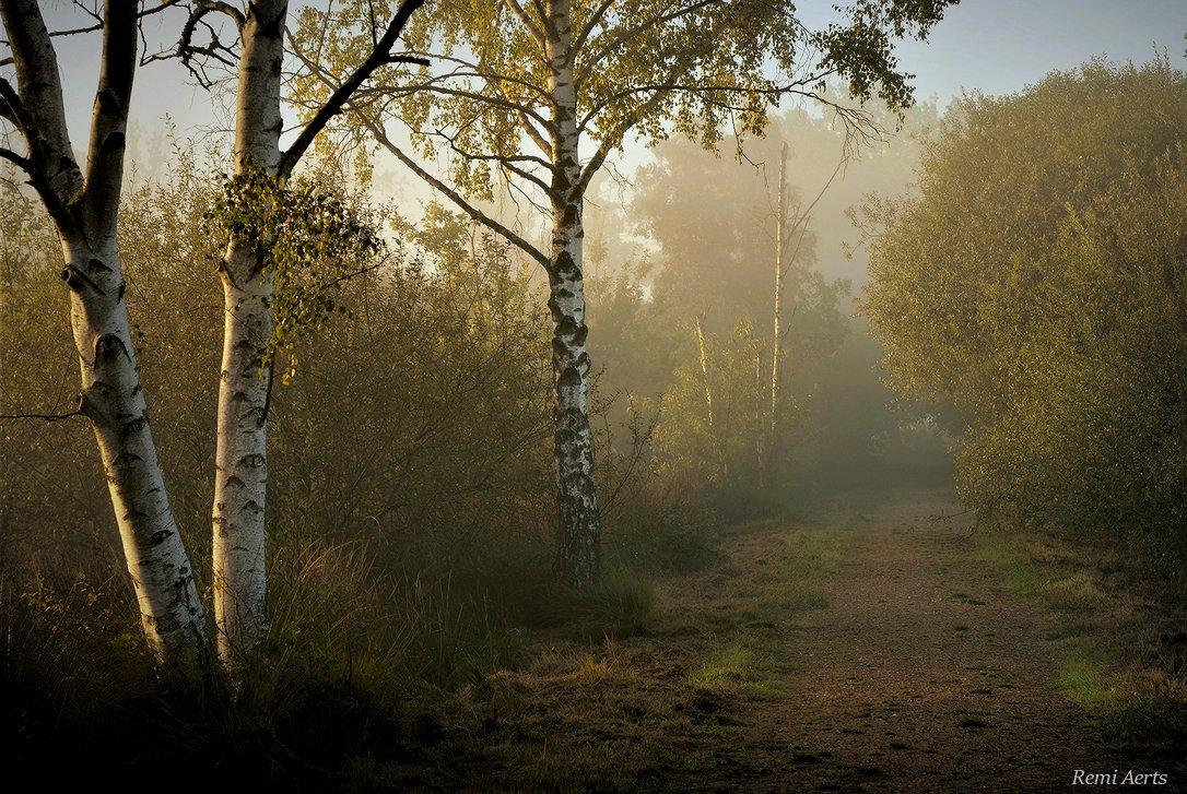 """фото """"***"""" метки: пейзаж, природа,"""